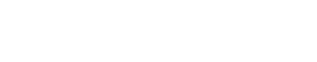Image of the Branch Support Services LLC logo